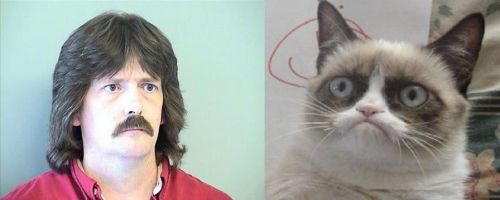 Grumpy Cats Father